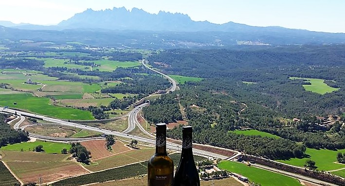 Montserrat Day Trip with winery visit