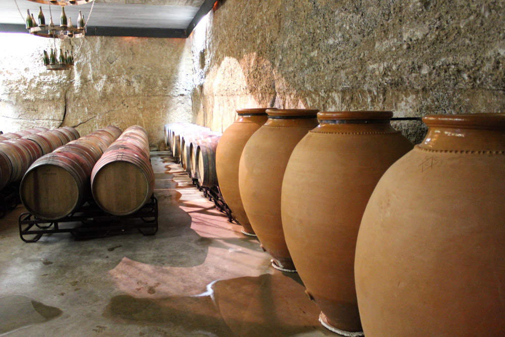 Private Barcelona Wine Tour