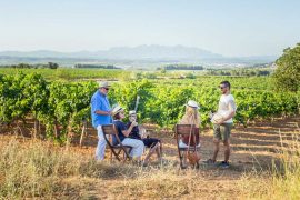 Penedes Wine Tour near Barcelona